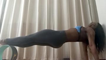 YogaWheel1